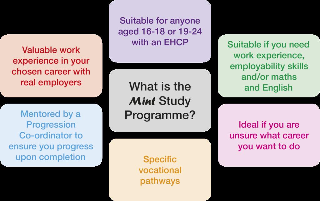 Study Programme